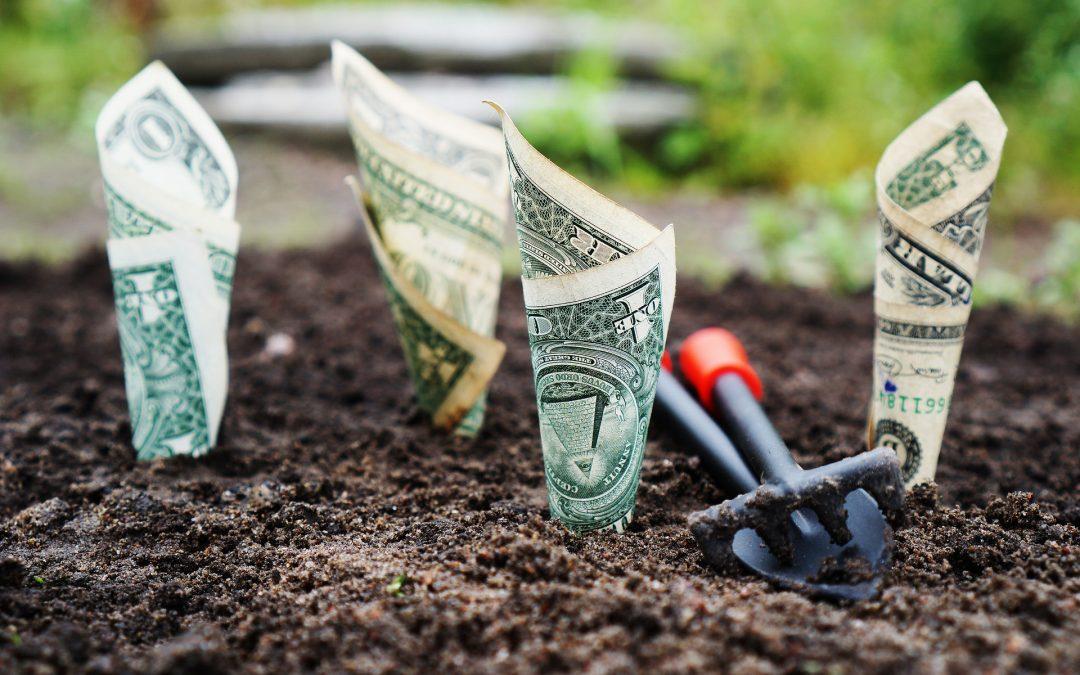 5 krokov ako získať dotáciu 8000 eur na rodinný dom