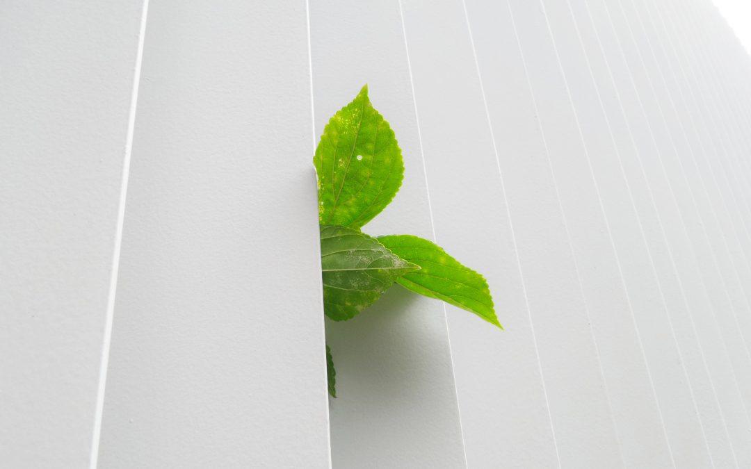 Túžite po ekologickej domácnosti?